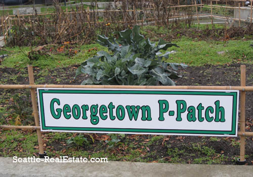 Georgetown P-Patch